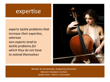 success-expertise