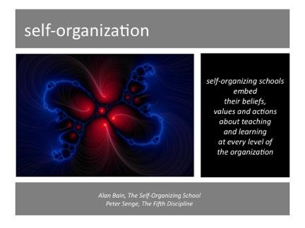 success-selforganization